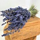 Bosje-gedroogde-Lavendel-XL-120-gram