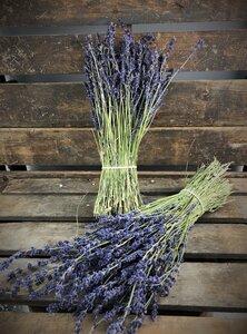 Bosje gedroogde Lavendel XL 120 gram