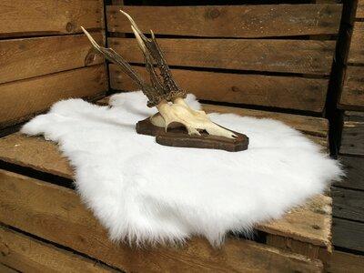 Afbeeldingsresultaat voor konijnenvacht decoratie
